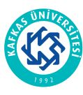 KAFKAS Université